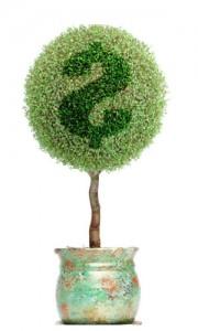 financing plant